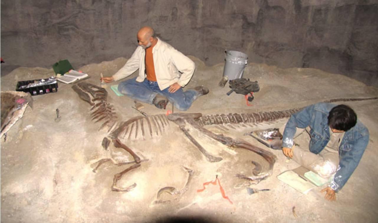 кости динозавров