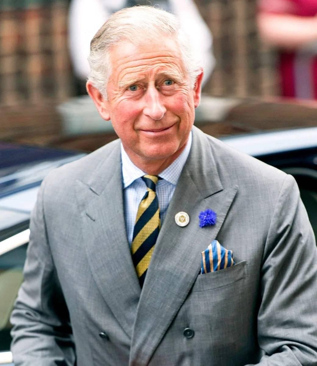 принц Уэльский принц Чарльз /avatars.mds.yandex.net/