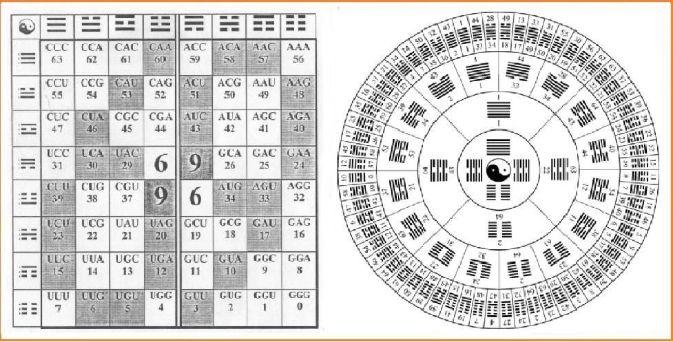Бипериодическая таблица генетического кода и 64 гексаграммы «Книги Перемен».