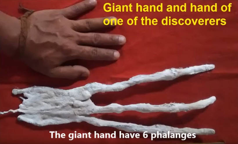 трехпалая рука гуманоида