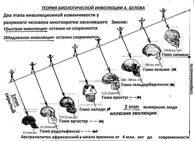 Гомо наледи – «звезда деградации» или о том, как инволюция живет и побеждает