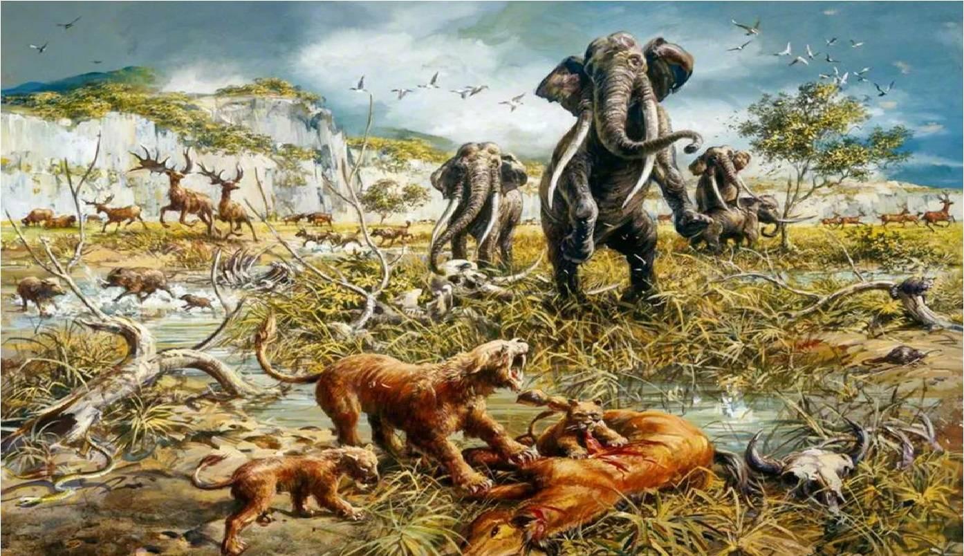 Естественный отбор дарвинистов