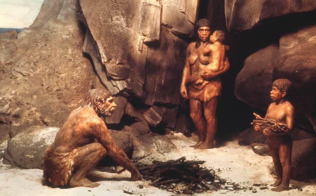 секс между неандертальцами и сапиенсами