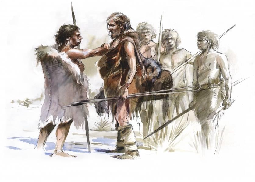 сапиенс или неандерталец