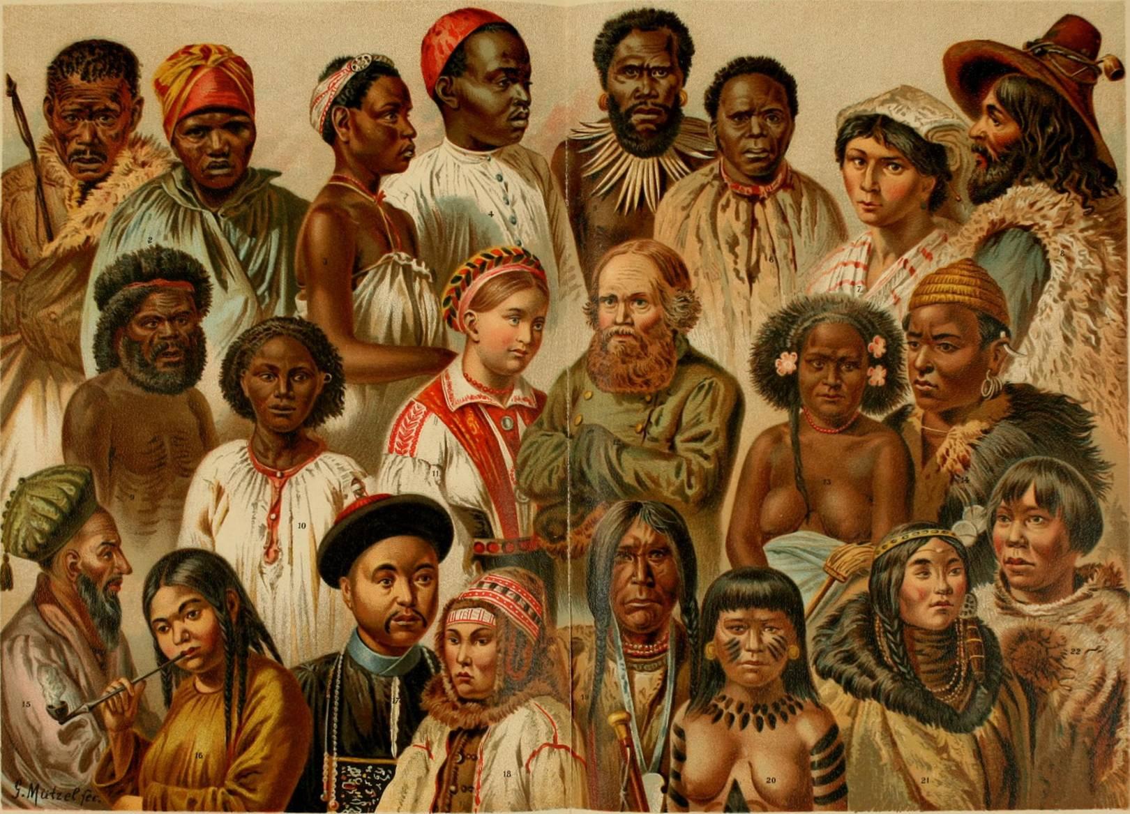 образование рас