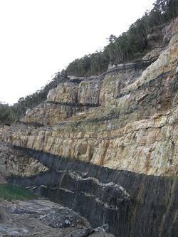 пласты угля в палеоценовых отложениях