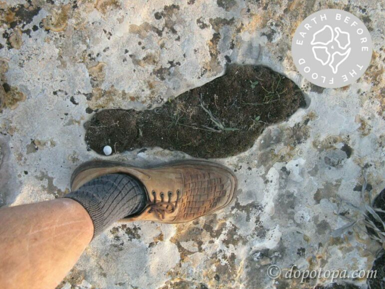 отпечатки обуви